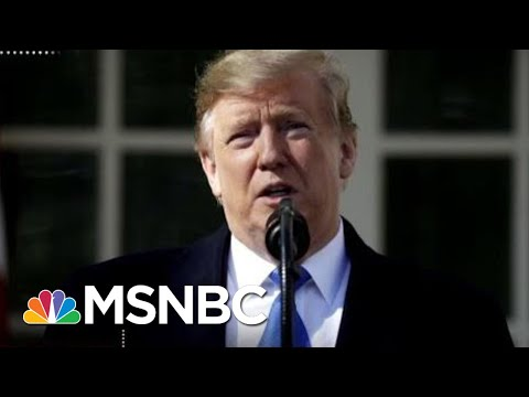 'Our President Is An Idiot': Trump Facing Both Sides Over Emergency Declaration | Deadline | MSNBC