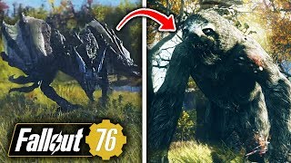Fallout 76 ALL NEW CREATURES BREAKDOWN - ScorchBeast, Mega Sloths & More! (Fallout 76 Gameplay)