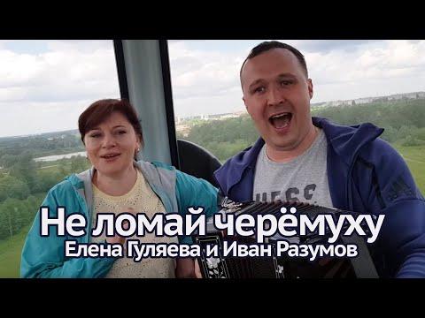 Не ломай черёмуху под гармонь - Елена Гуляева и Иван Разумов