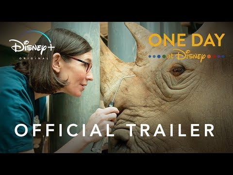 One Day at Disney | Official Trailer | Disney+ | Start Streaming Now