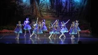 Ballet Performance 2015 - Winter Fairies