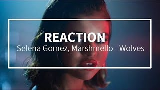 Gambar cover Selena Gomez, Marshmello - Wolves - REACTION
