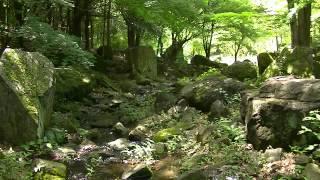 【癒し系】自然音 せせらぎ ソフト水流音3時間