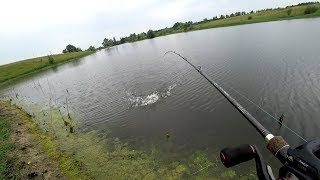 Самые уловистые приманки для хищных рыбалка