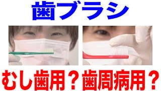 むし歯予防?歯周病予防?歯ブラシ選びのコツ