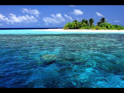 ➤Дикие острова Европы✅приключения про необитаемые острова✅  | ТВ документальные фильмы