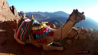 Египет Гора Синай(Моисея) в январе 2020 г