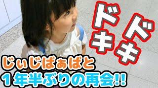 じぃじばぁばと1年半ぶりの再会! 3歳女子の北海道旅行
