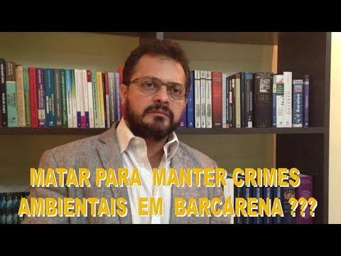 MATAR PARA MANTER CRIMES AMBIENTAIS EM BARCARENA ???