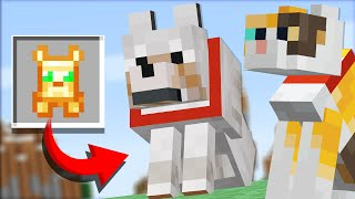 NEW items for PETS in Minecraft (Comments to Crafting)