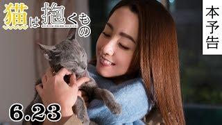 「猫は抱くもの」の動画