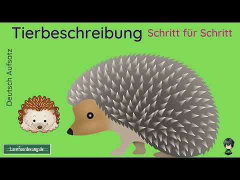 Günstiger single urlaub in deutschland