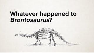 Whatever happened to Brontosaurus?