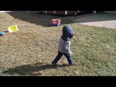 Little Boy Learns Dog Walking - 1064499