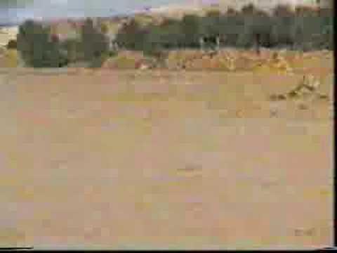سيول الحوطة والحريق 1415