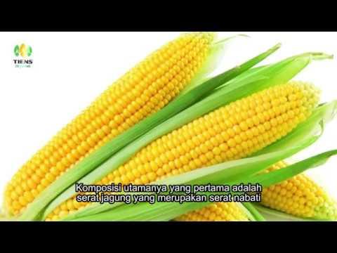 mp4 Medical Kost Syariah, download Medical Kost Syariah video klip Medical Kost Syariah