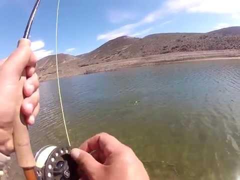 Pesca del Pejerrey Patagonico