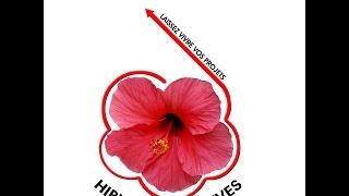 preview picture of video 'Les actions d hibiscus initiatives : festival de l'eau à BANGOUA en 2007'