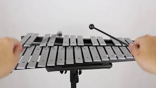 BSL 30 Note Xylophone Foldable Glockenspiel Vibraphone With Bag