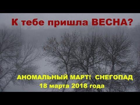 Снегопад в марте. март 2018 Украина. Аномальный март.