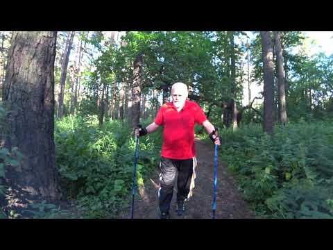 Какие заболевания можно лечить скандинавской ходьбой — Академия здоровья Мелехина