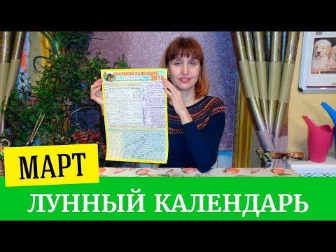 Гороскоп для украины на 2017 год