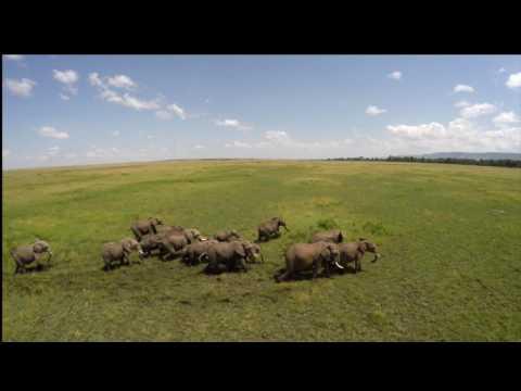 Small, private and exclusive in the Masai Mara