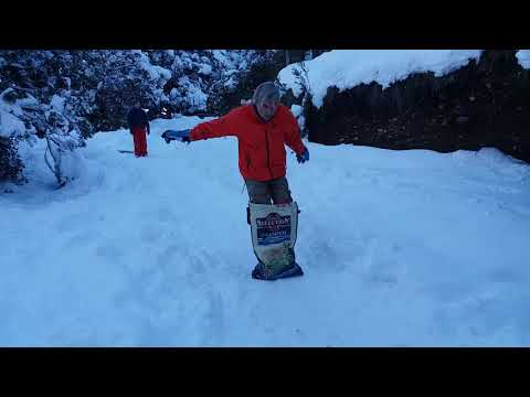 Snowboard en bolsa