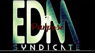 Purpose Episode 4 - EDM Syndicate