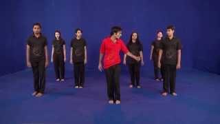 latest Garba( 24 steps dvd) ahmedabad gujarat : Egarba Tutoria...