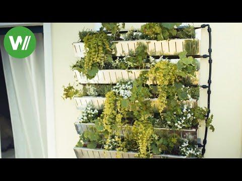 Balkon und Terrassenbegrünung - Topfpflanzen, Kräuterhochbeet, Blumenampeln