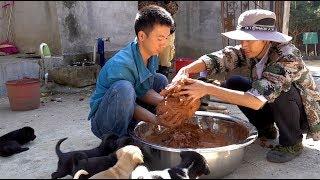 华农兄弟:好久没吃肉了,刚好大婶家养了好多鸡,抓一只来做叫花鸡