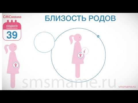 39 неделя беременности - когда ехать в роддом?