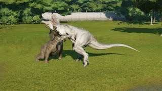3 Triceratops(Modified) VS Spinosaurus, I-Raptor, I-Rex, Suchomimus and T-Rex - JWE