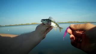 Рыбалка на озере андреевском тюмень