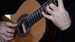 Guitarras admira - Modelo Teresa
