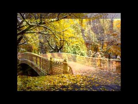 Jesień- tango- TADEUSZ MILLER
