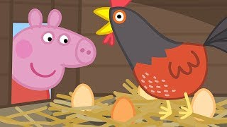 Świnka Peppa ⭐ Kurczęta Babci Świnki ⭐ Bajki Po Polsku   Peppa po Polsku