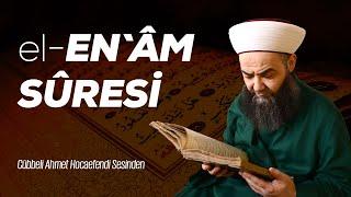 6 el-En'âm Sûresi