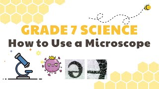 How to Use a Microscope, Magnification | Grade 7 Science DepEd MELC Quarter 2 Module 2