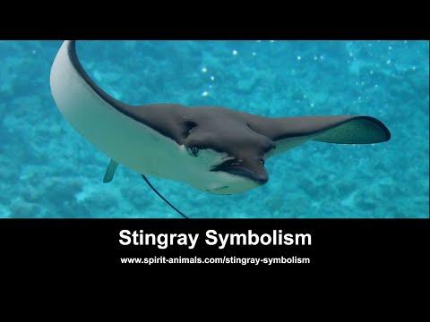 Stingray Symbolism