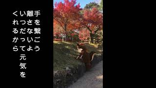 """西中島きなこ """"僕の可愛い人 (デモTake1)"""" (Official Music Video)"""
