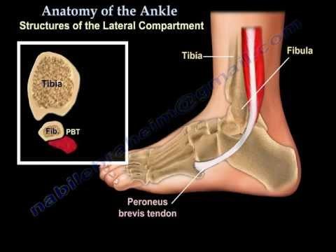 Ból pleców daje nogę podczas ciąży