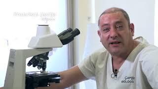 Francisco Garijo - Equipo médico de las clínicas de reproducción asistida EasyFIV
