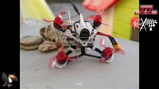 RacerX FPV Twiglet Mini