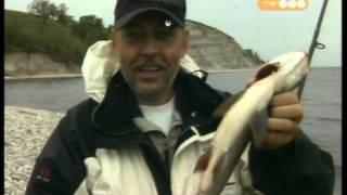 Рыбалка в селе ахмат саратовской области