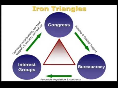 PSCI 110 Iron Triangle and Issue Networks