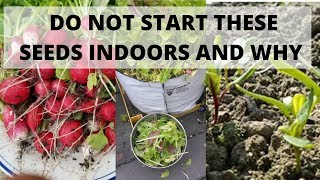Do not start these seeds indoors