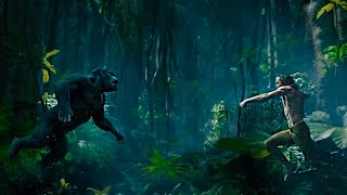 Легенда о Тарзане (2016) Смотреть HD Трейлер