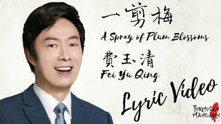 一剪梅 A Spray Of Plum Blossoms - 费玉清 Fei Yu Qing ( Chinese / Pinyin / English Lyrics 歌詞 )